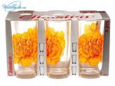 Набор 6 шт стаканов Пион   27716